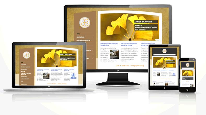 Acupuncture web design